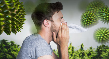 Allergic To Weed? This Could Be the Cause